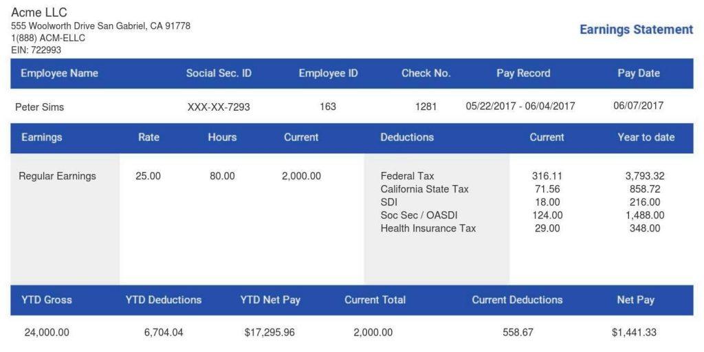paycheck stub online